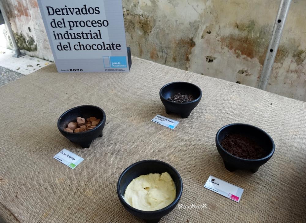 Del Cacao al Chocolate (2/3)