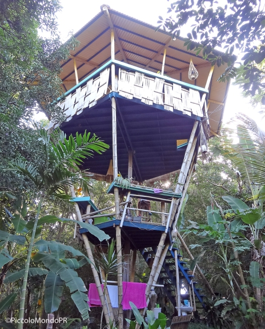 Tropical Treehouse5