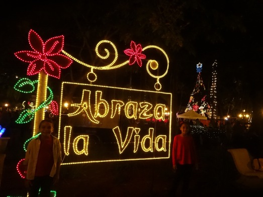 Navidad Criolla Caguas