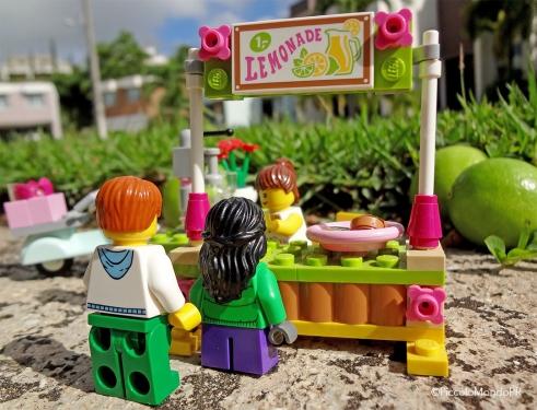 LEGO photo2