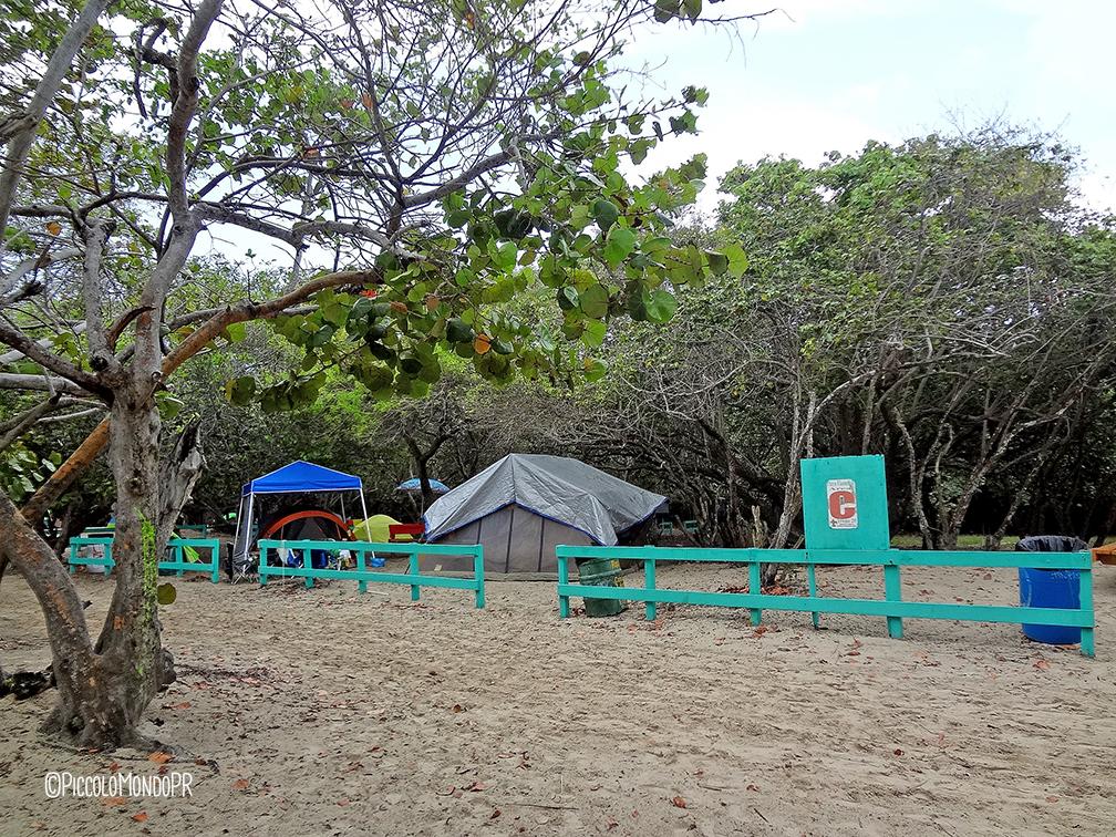 playa-flamenco-camping