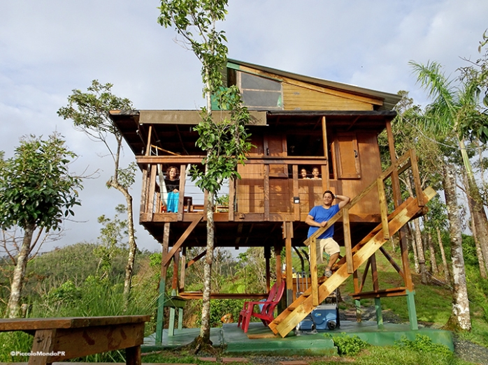 Lake carite Treehouse Piccolo15