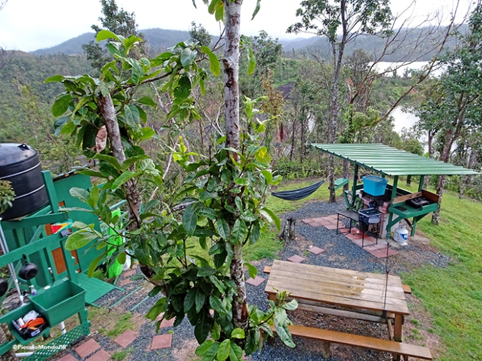 Lake carite Treehouse Piccolo19