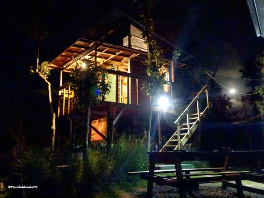 Lake carite Treehouse Piccolo43