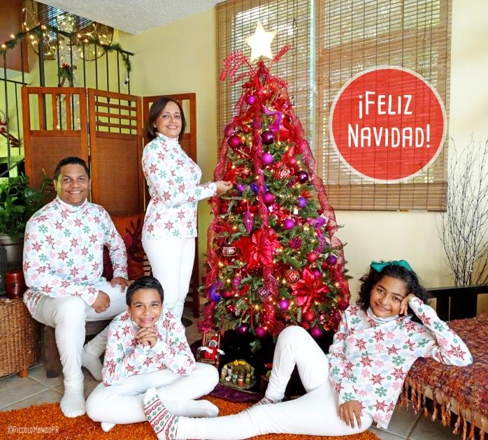 Navidad PicFAM2 2018