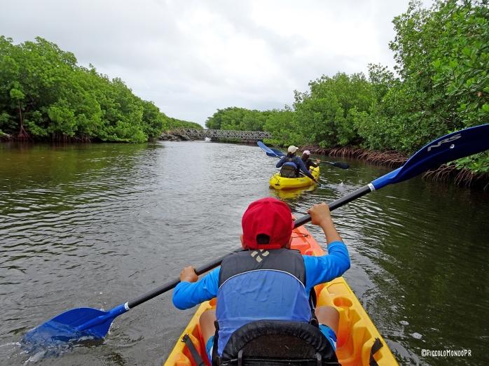 MEdio Mundo Daguao Kayak PMPR