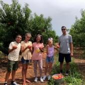 Greggs Peach Farm 2 PM